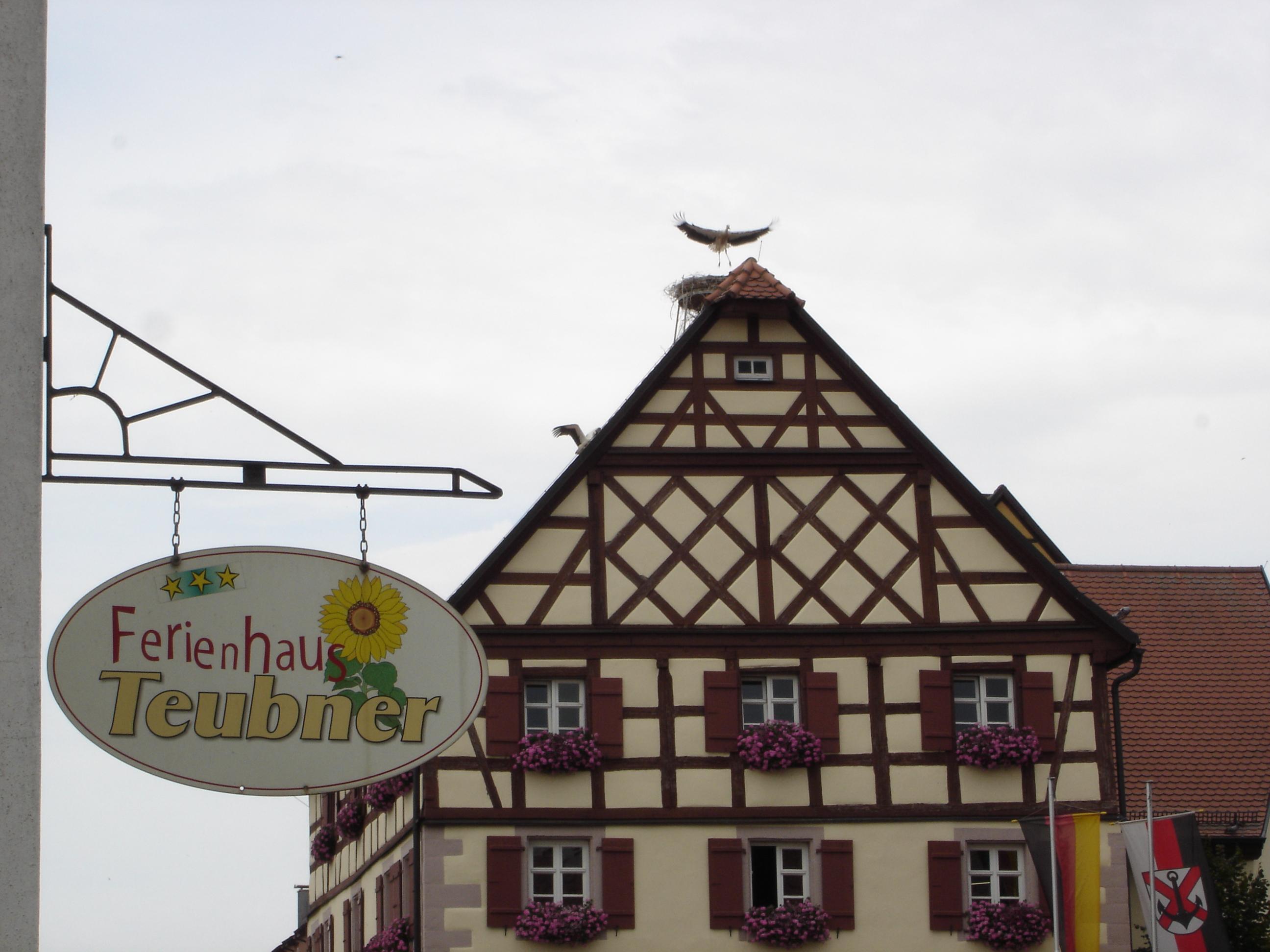 Storch auf dem Rathausdach von Merkendorf