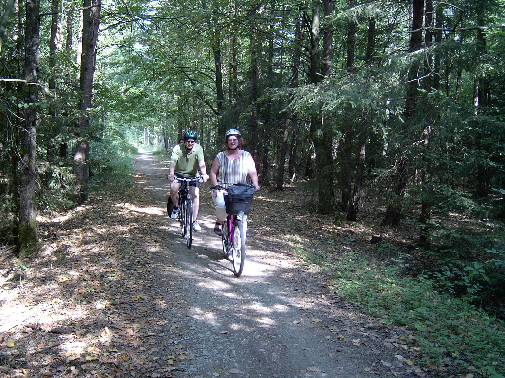 Fahrradweg zum Altmühlsee