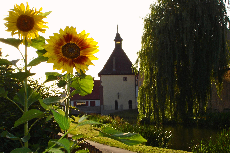Unteres Stadttor von Merkendorf